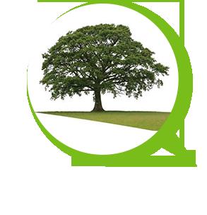 Jardi Clean – Entretien parcs et jardins